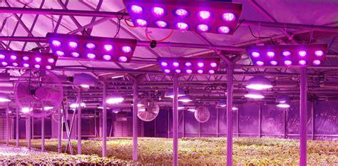 led plant lights led light design amazing led grow lights led