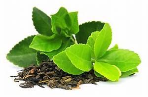 Bienfaits Du Thé Vert : les bienfaits du th vert d caf in nutrilife blog sant ~ Melissatoandfro.com Idées de Décoration