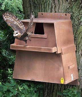 barn owl box owl house owl box bird house kits