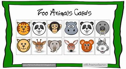 Zoo Cards Theme Preschool Esl Animal Eflpreschoolteachers