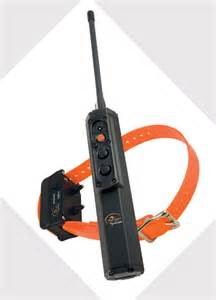 shock collar for cats cat shock collar