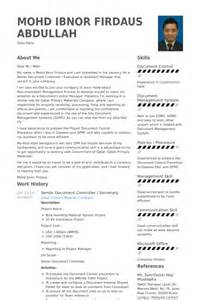 exle of resume for document controller controller resume sles visualcv resume sles database