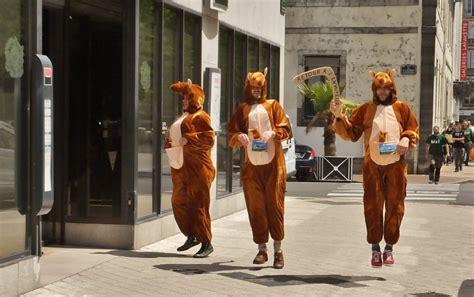 adresse si ge soci t g n rale 3 kangourous reçus par le directeur régional de la société
