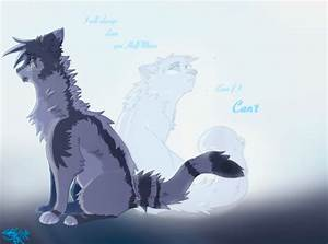 The gallery for --> Warrior Cat Drawings Couple