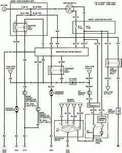 1993 Honda Accord Fan Wiring Harness Diagram