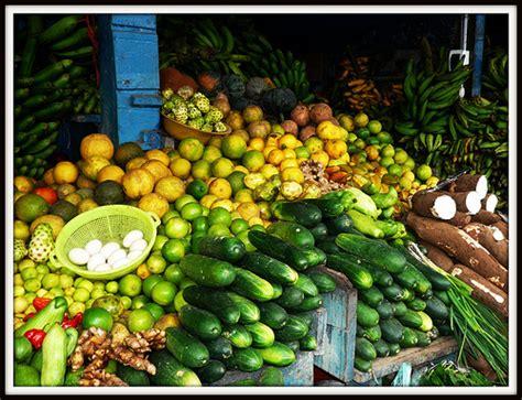 amazon cuisine rainforest foods deanamorrison flickr