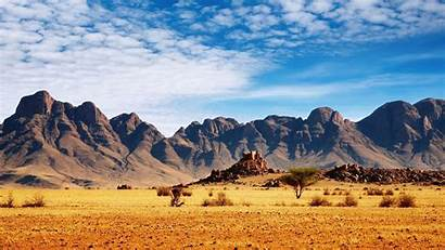 Safari Wallpapers