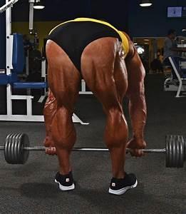 Pro Training Tips For Massive Quads  U0026 Hamstrings