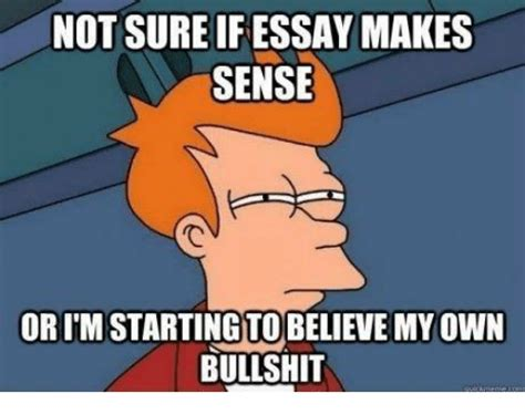 Essay Memes - not sure if essay makes sense orimstarting to believe myown bullshit unlv meme on sizzle