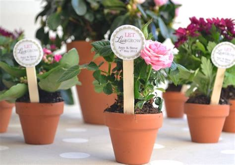 mini flower pot diy favors   terracotta plant pots