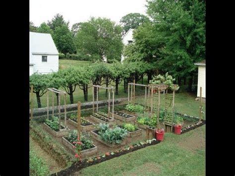 aimans mom backyard garden grow   organic