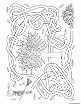 Maze Coloring Rake Leaves Sheet Fall Activity Printable sketch template