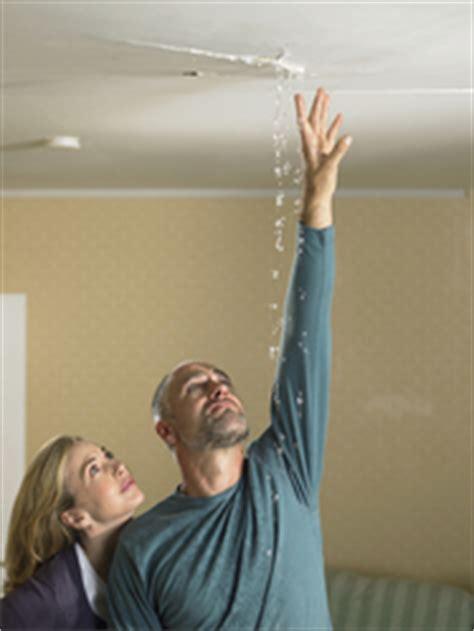 fissure plafond comment r 233 parer les fissures au plafond