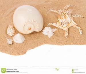 Seashells On Sand Border Stock Photos - Image: 31603203