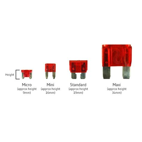 Mini And Standard Blade Fuses