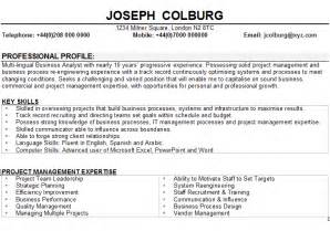 Ba B Ed Resume Format by Curriculum Vitae Curriculum Vitae Business Analyst