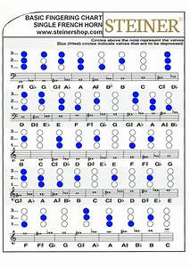 Single French Horn Chart By Steiner Music Issuu