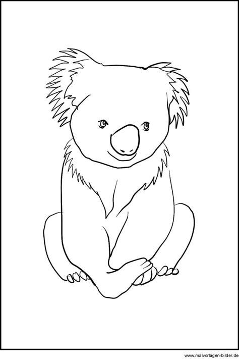 koala baer ausmalbild malvorlagen zum ausdrucken