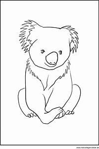 Koala Br Ausmalbild Malvorlagen Zum Ausdrucken