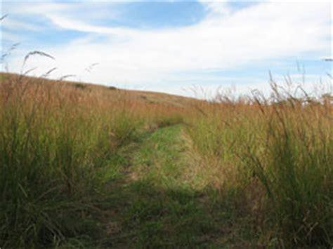 nature trails tallgrass prairie national preserve
