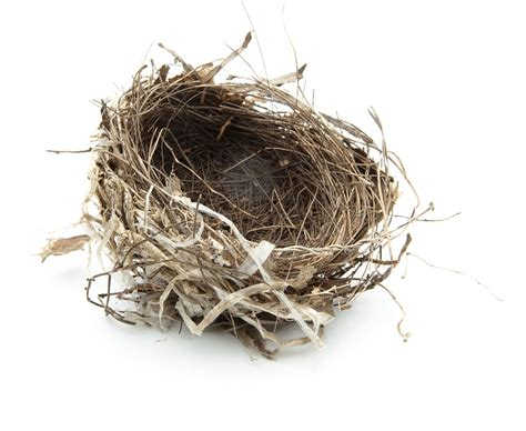 Nest Syndrom by Empty Nester Couples Hairstylegalleries