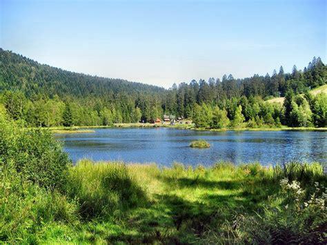 le chalet du lac gerardmer chambres d h 244 tes g 233 rardmer galerie les lacs