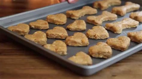 how to make doggie biscuits treats