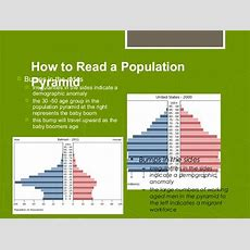 Types Of Population Pyramids