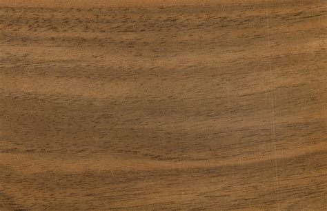 french chestnut wood texture image   cadnav