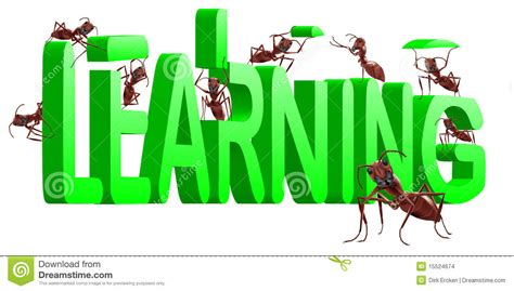 learning building knowledge experience education stock