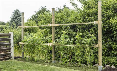 Garten Abstand by Rankhilfe F 252 R Himbeeren Selber Bauen Mein Sch 246 Ner Garten