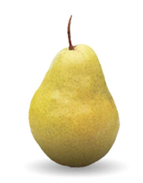 Pears - Sage Fruit
