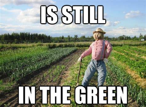 Dennis Green Meme - the best of the scarecrow meme