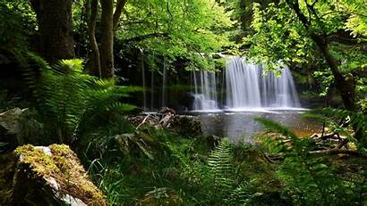 1080p Nature Wallpapers Background Shadow Grass Waterfall