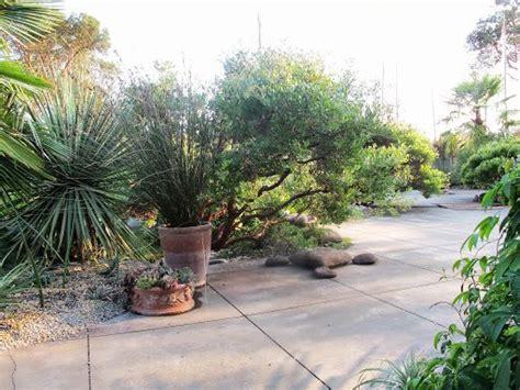 windcliff nursery windcliff dan hinkley s garden garden pinterest