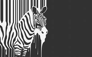Creative, Zebra, Vector, Wallpapers, Hd, Desktop, And, Mobile