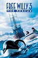 Watch Free Willy 3: The Rescue (1997) Free Online