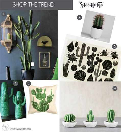cactus home decor shop the trend family home lifestyle with munchers