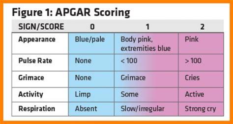 Apgar Score Chart Resimlere Gore Ara RED