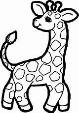 Giraffe Coloring Pages Clipart Clipartmag Animated Webstockreview sketch template