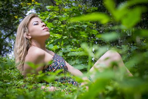 images tree nature forest grass plant girl
