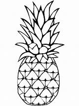 Pineapple Coloring Pages Fruits Cartoon Clip Drawing Fruit Clipart Template Printable Sketch Colors Recommended Getdrawings Clipartmag sketch template