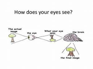 How Do You Take Care Of Your Eyes