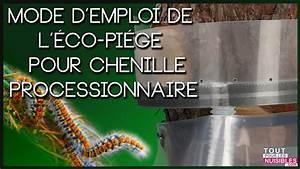 Piege A Chenille Processionnaire Du Pin : eco piege chenilles processionnaires youtube ~ Premium-room.com Idées de Décoration