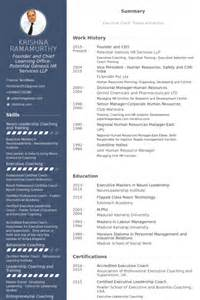 resume templates for ceo ceo resume sles visualcv resume sles database