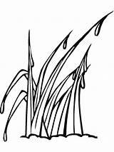 Grass Coloring Gras Mycoloring Ausmalbilder Printable Ausdrucken Malvorlagen Kostenlos Zum sketch template