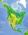 Land cover of North America