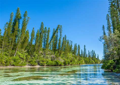 aquarium isle of pines travel to new caledonia oro bay