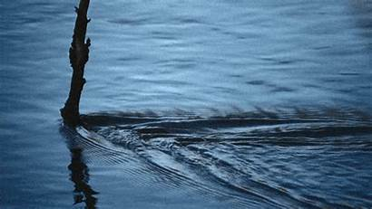 Water Animated Flowing Gifs Speakgif Under