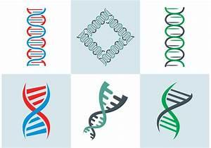 DNA Double Helix Vector Free - Download Free Vector Art ...